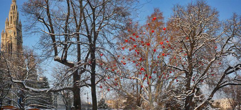 Vienna Trees